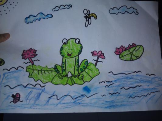 青蛙也爱美丽的荷花-荷园,我来啦