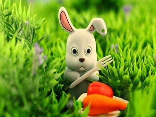 小兔子,真可爱,爱吃萝卜和青菜.